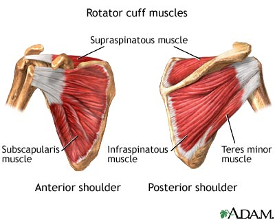 Strengthening the rotator cuff fo stabilze the shoulders on the back