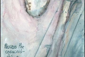 Blog:  http://sharonfrost.typepad.com/day_books 12 x 6 in.; watercolor, ink, whatever, on Stonehenge.