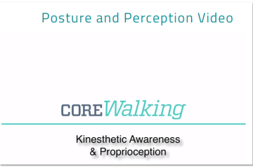 posture and perception 2