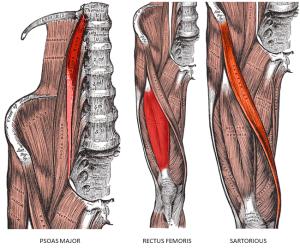 hip flexor issues